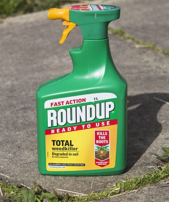 roundup causes cancer jury finds